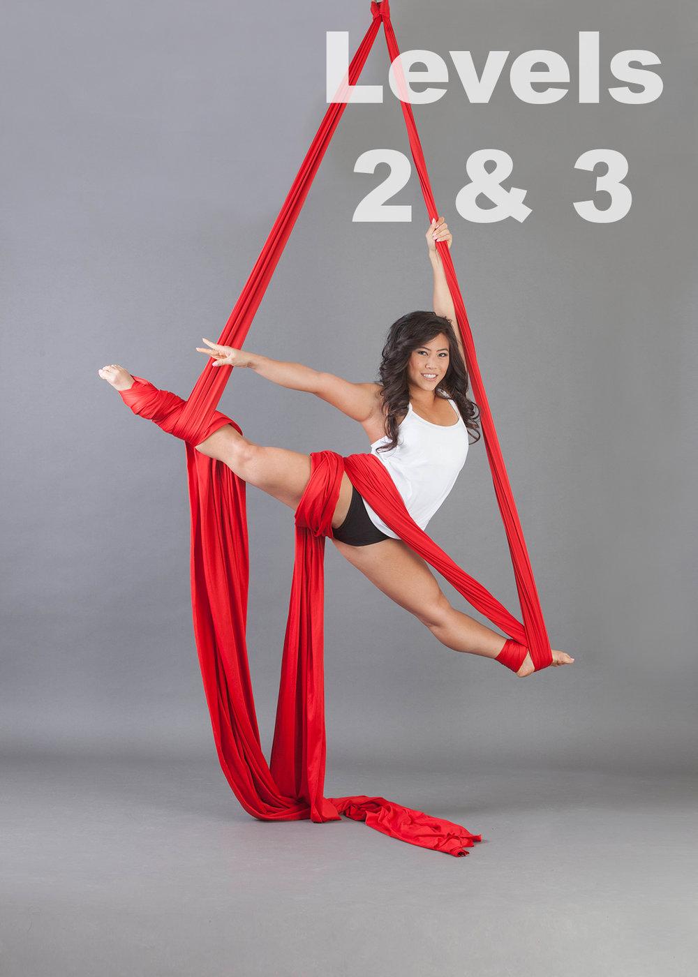Silk Level 2 and 3.jpg