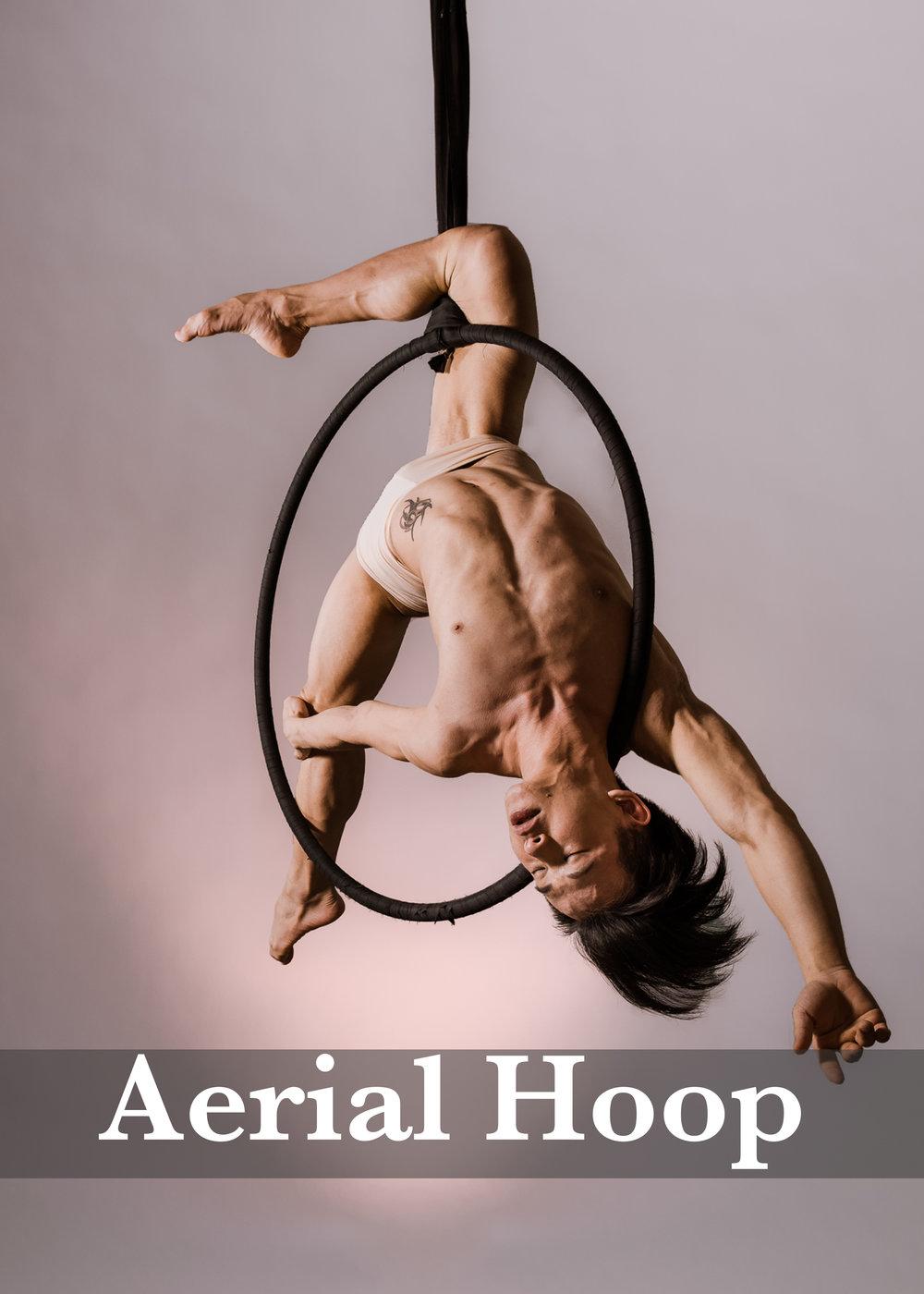 Aerial Hoop2.jpg