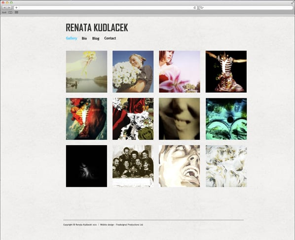 Artist Gallery Design