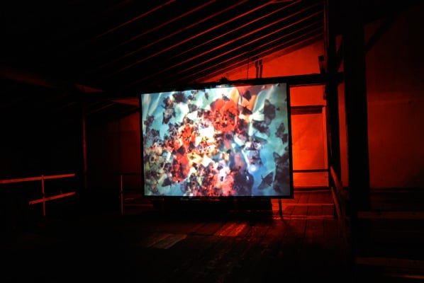 Artist Video Installation