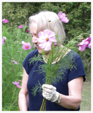 April cutting cosmos in the garden.