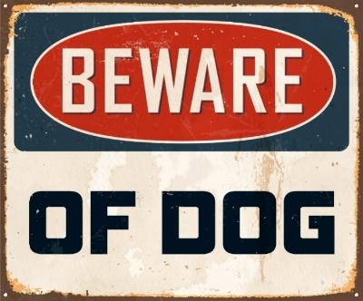 Dog Bites.jpg