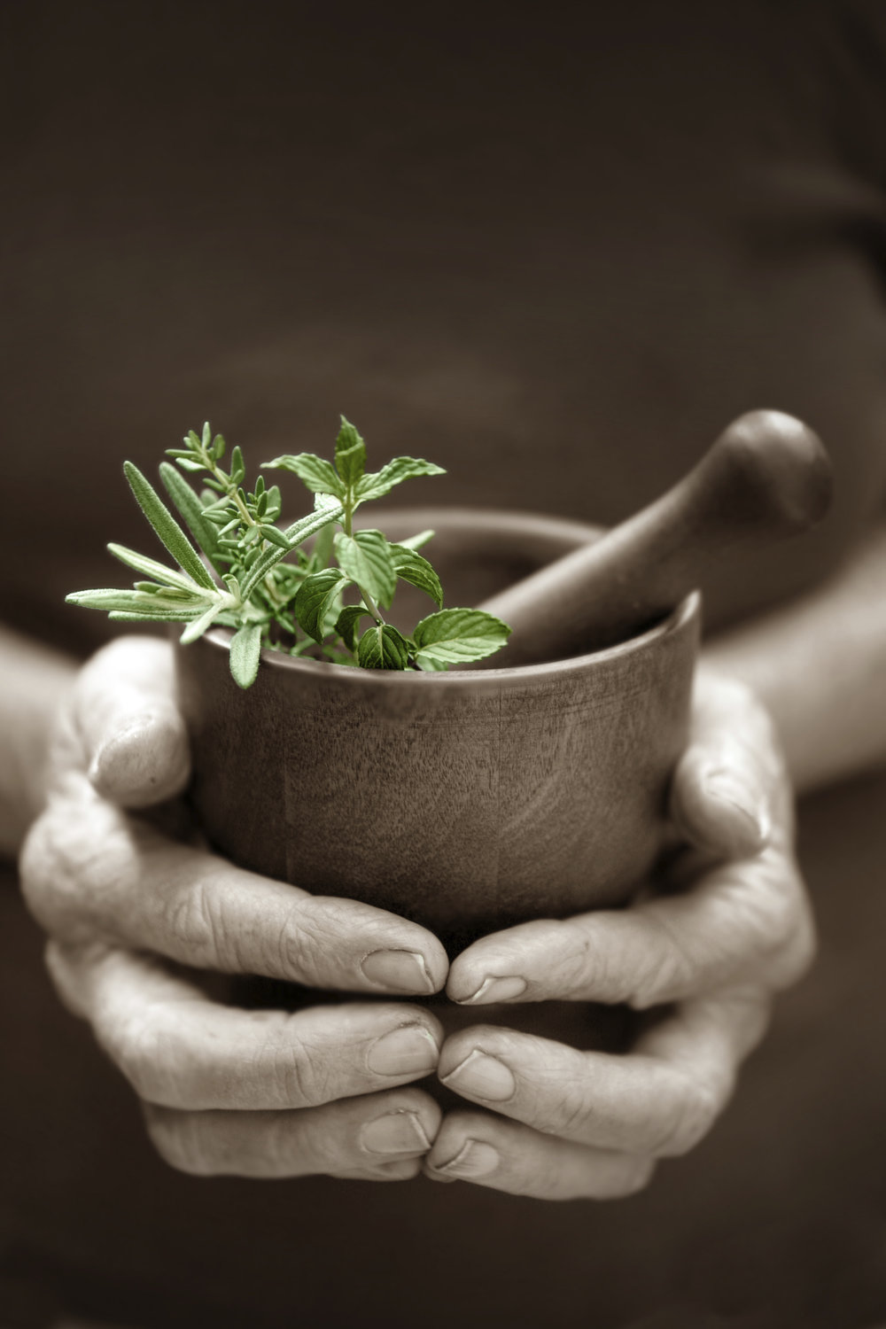 Alternative-Herbs-000010728932_Large.jpg
