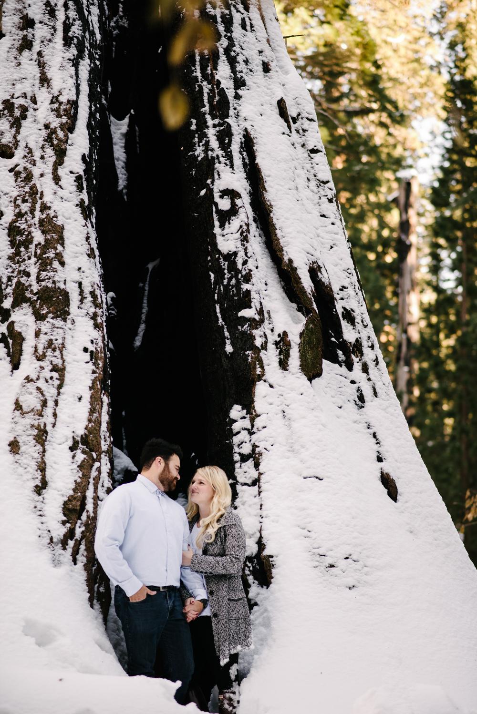 George and Alyssa Sequoias Engagment-10.jpg