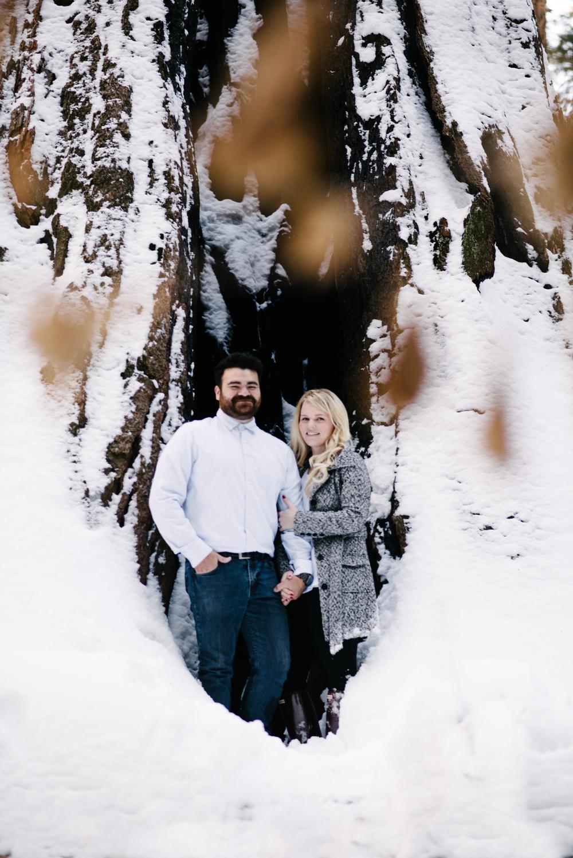 George and Alyssa Sequoias Engagment-12.jpg