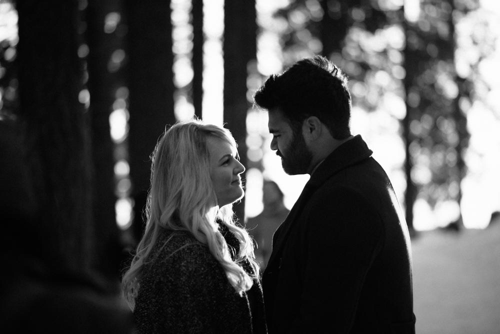 George and Alyssa Sequoias Engagment-31.jpg