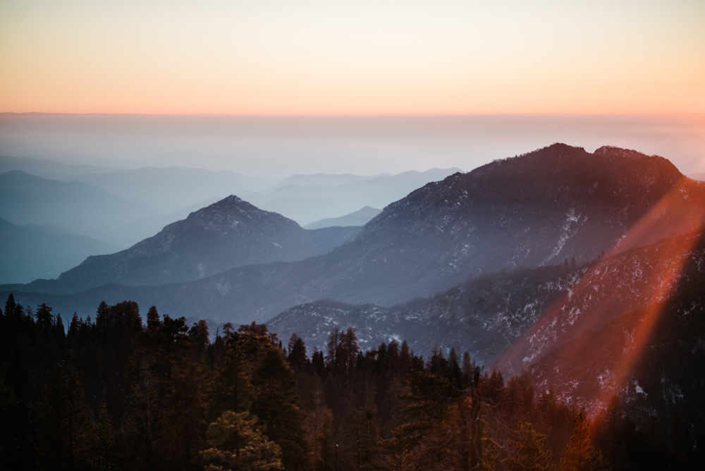 George and Alyssa Sequoias Engagment-33.jpg