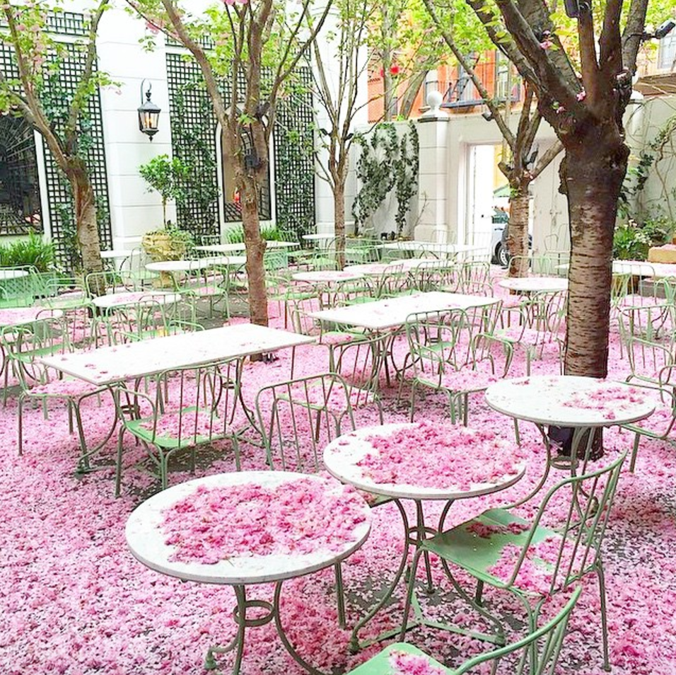 Laduree Soho - April 25th, 26th, 27th (photo from Laduree, still on my bucket list!)