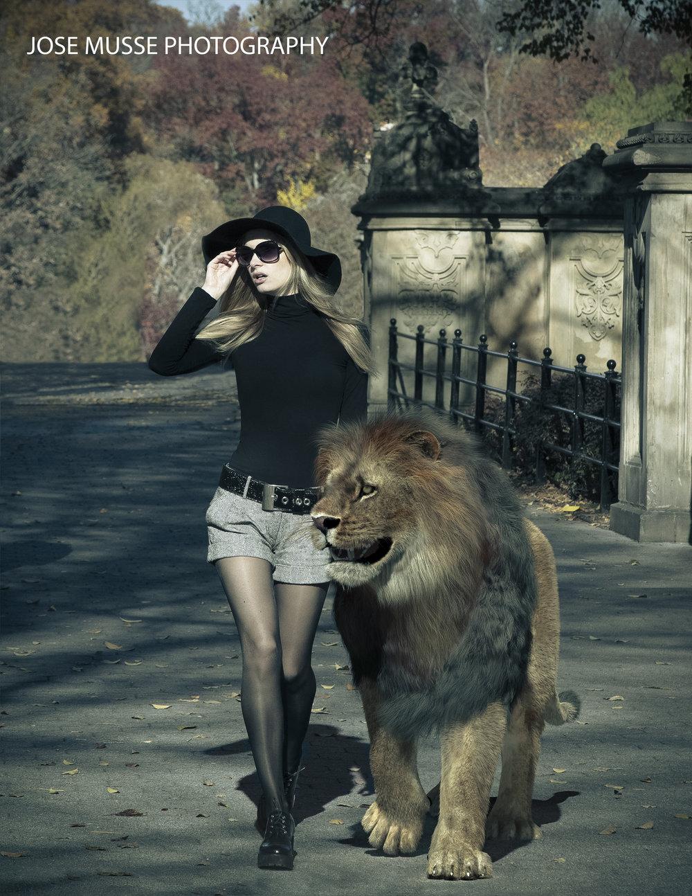 lion_final_crossp2_LOGO.jpg