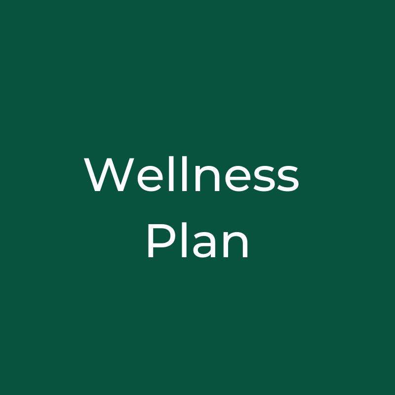 Wellness Plan.png