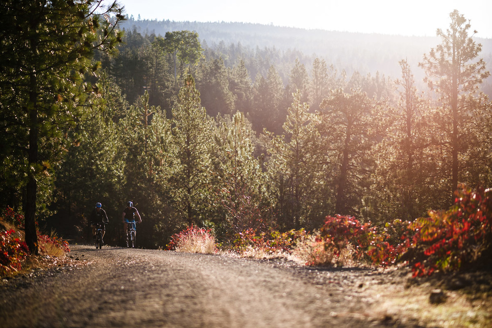KVR cycling