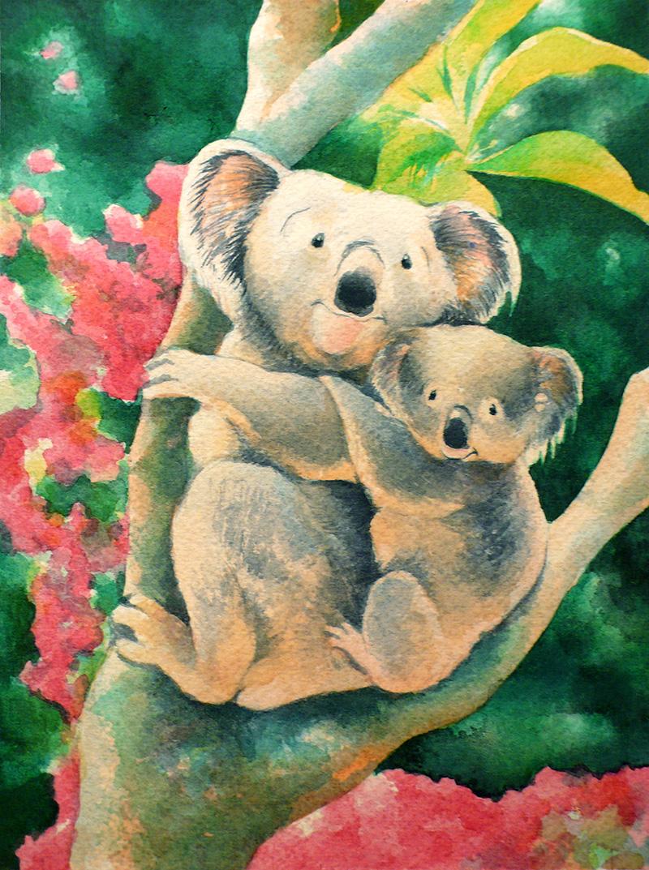 koala2.jpg