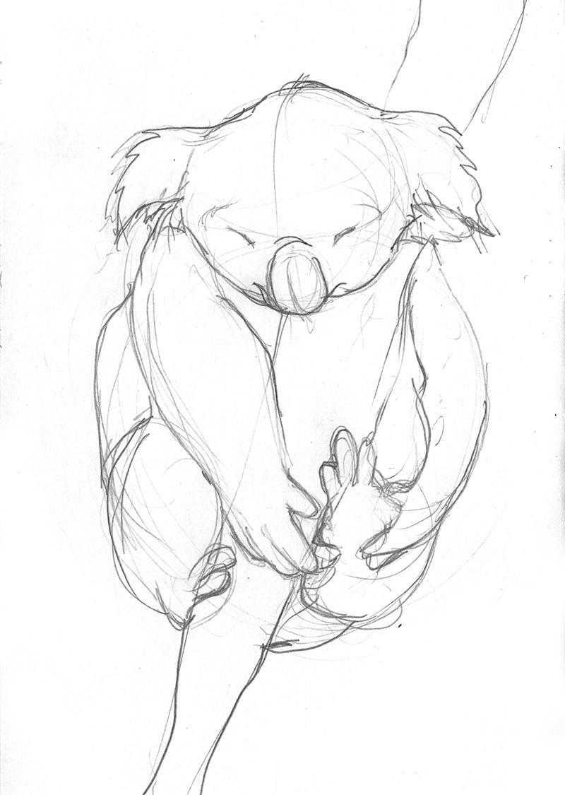 koala_sketch1.jpg