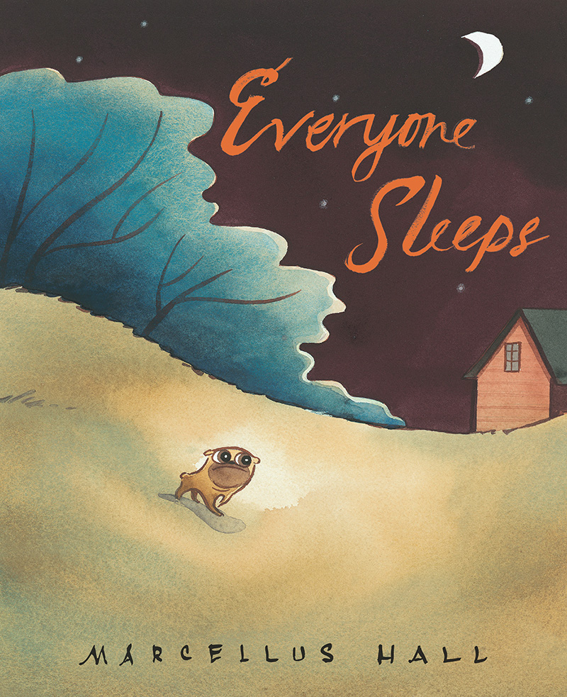 EveryoneSleeps_cover.jpg