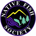 nfs-logo