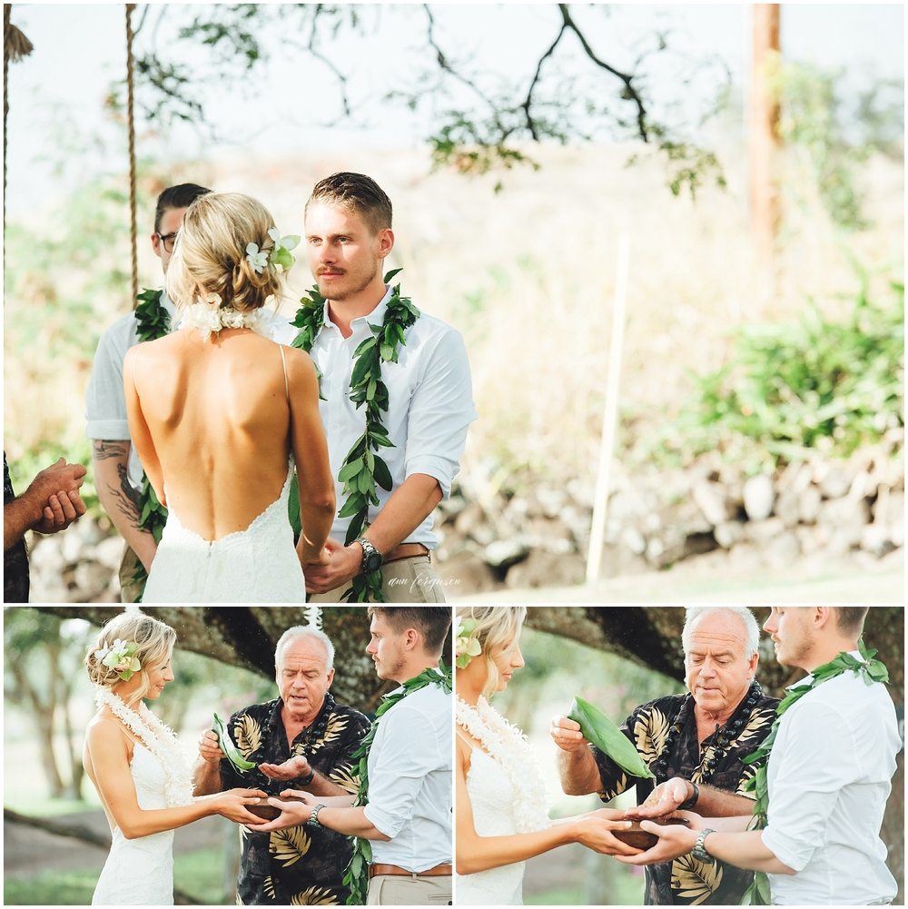 hawaii wedding puakea