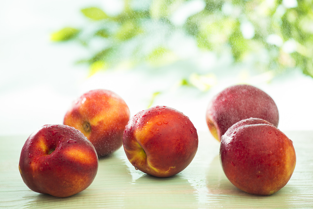 Nectarines, Summer, 2014