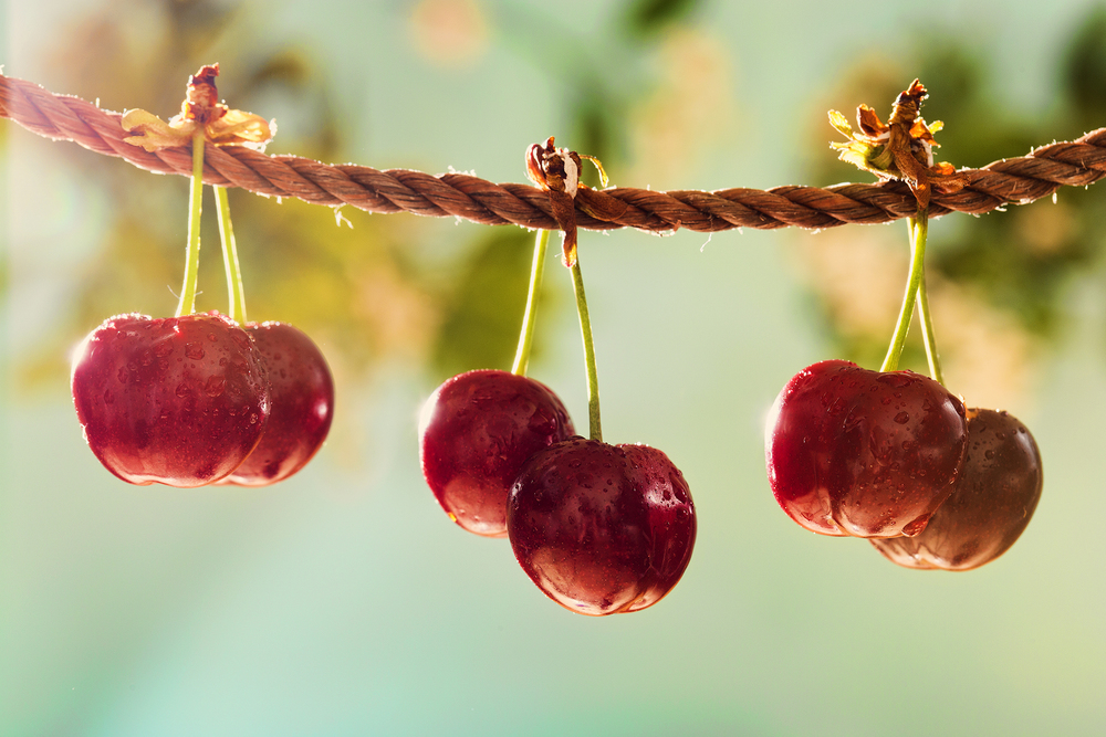 Cherries shot inside my living room, Summer, Dublin 2014