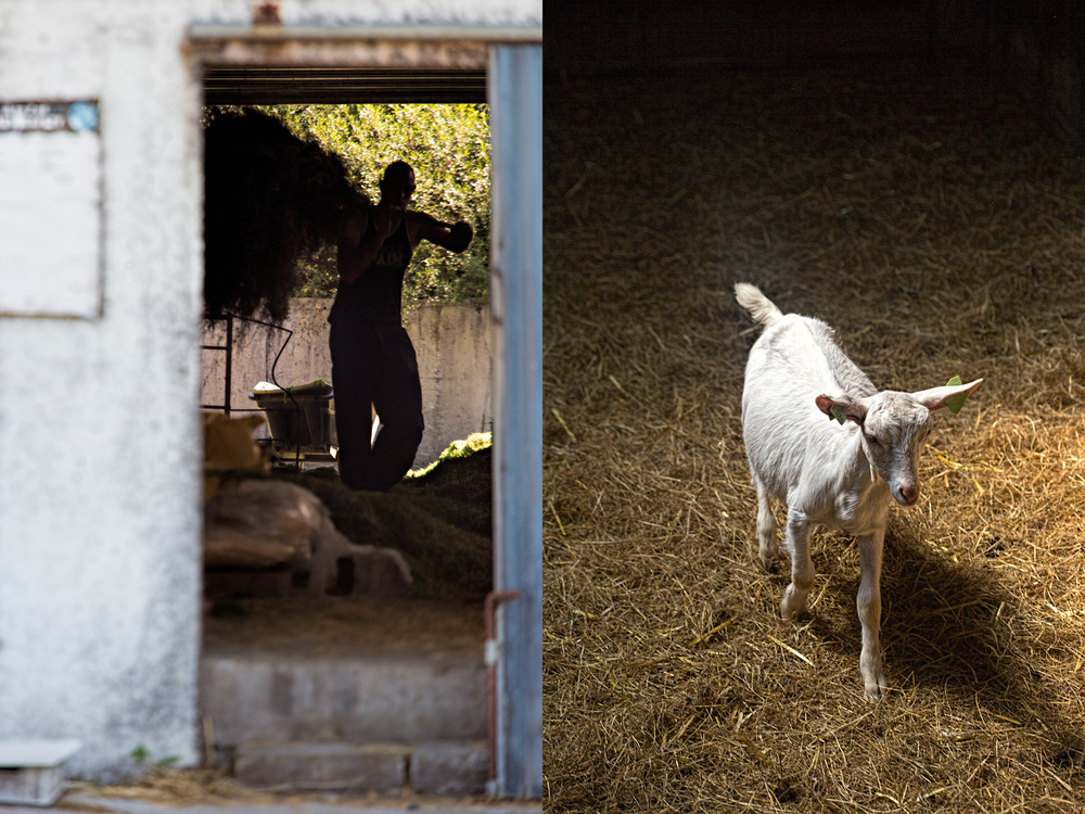 Worker and lamb coming out of the darkness....