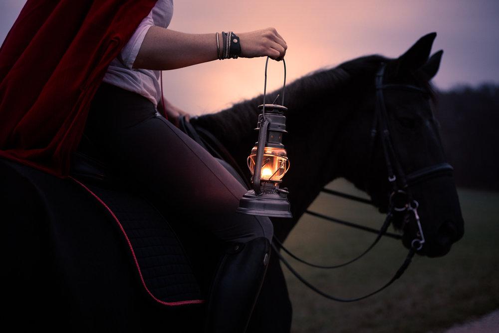 Pferdeshooting_1.jpg