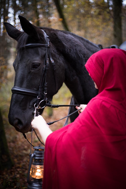 Pferdeshooting_5.jpg