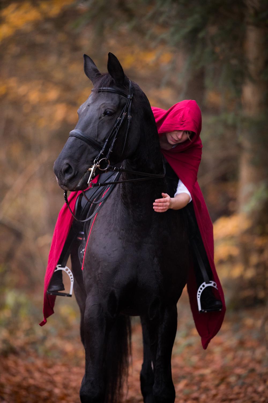 Pferdeshooting_7.jpg