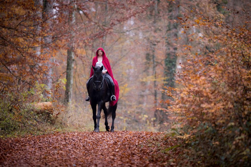 Pferdeshooting_9.jpg