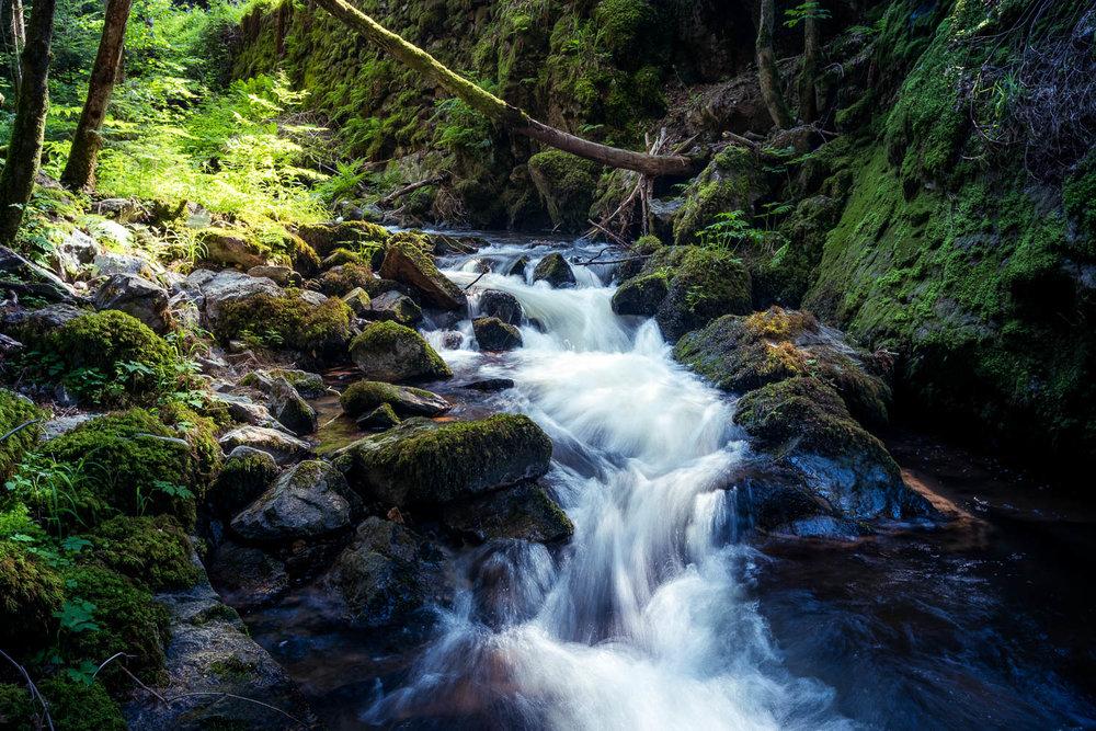 schwarzwald-wasserfall-fluss-langzeitbelichtung-daniel-wohlleben.jpg