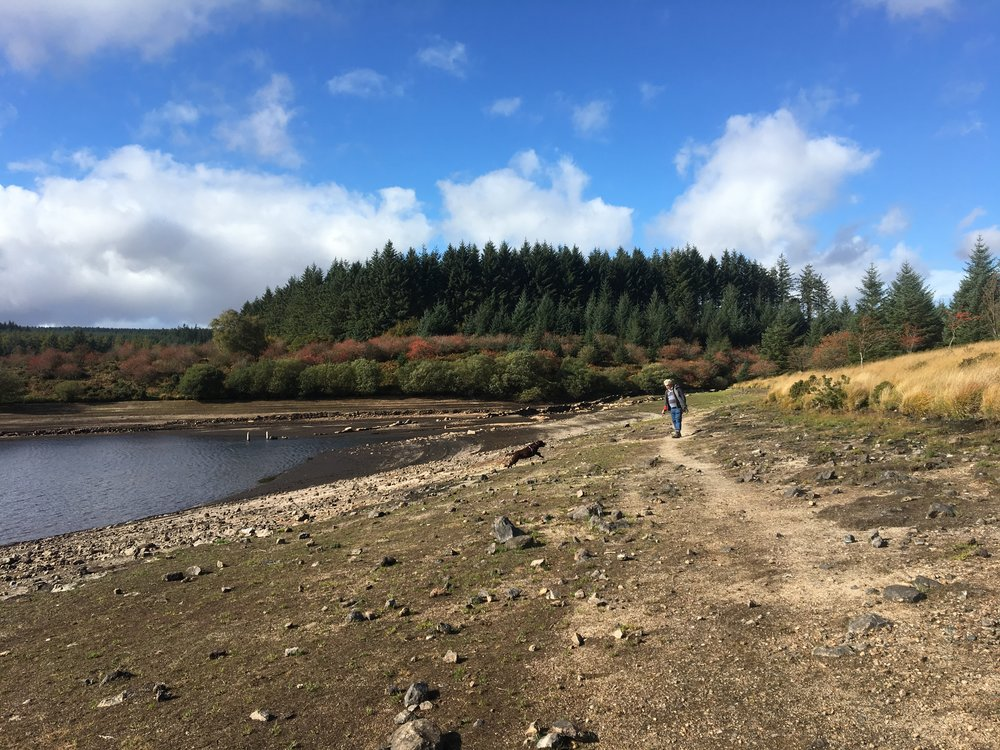 Fernworthy Reservior - water levels lowest in 55 years!