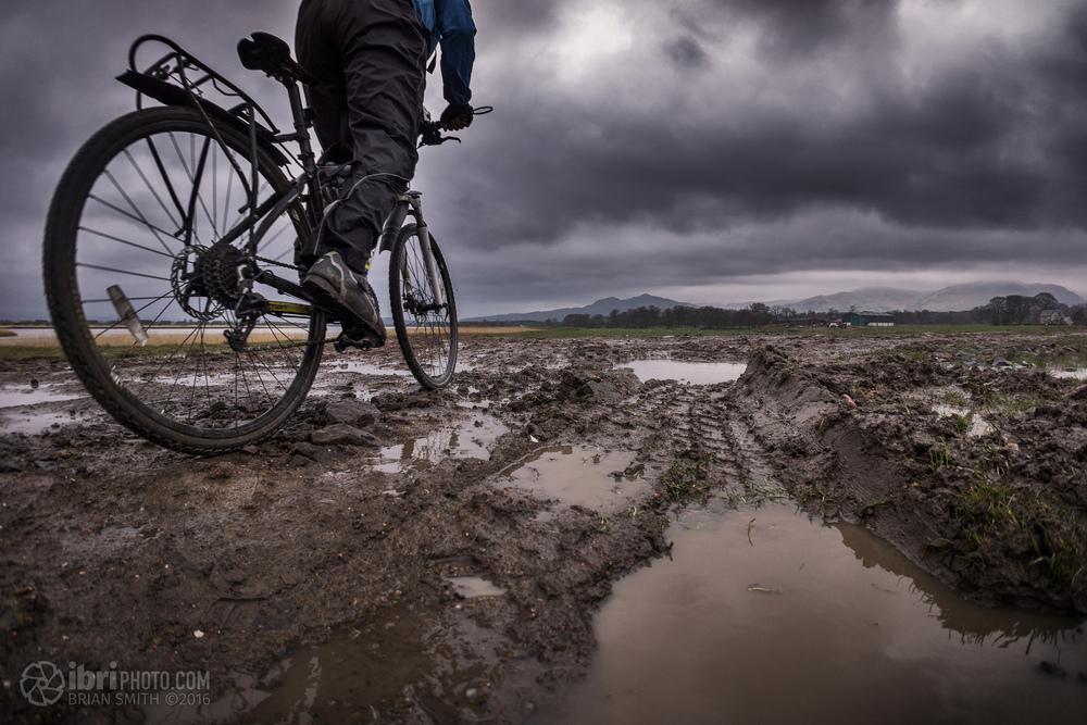Mud!... meh... mud.