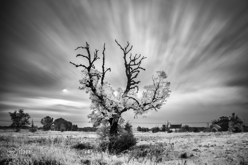 Sony E 16mm –Sky -f18 • 104sec • ISO100 –Foreground and Tree - f18 • 1/10sec •ISO100 Opened as layers in Photoshop to combine both shots.
