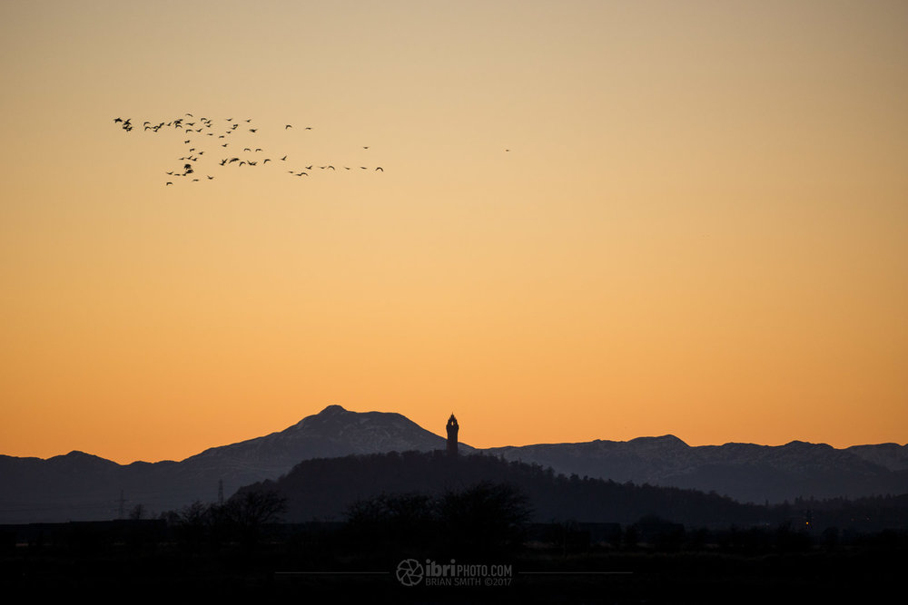 Ben Ledi and The National Wallace Monument from South Alloa, Stirlingshire. Sony Nex 7 - Sony E 55-210mm f4.5-6.3 OSS - 174mm - 1/160 - f6.3 - ISO400
