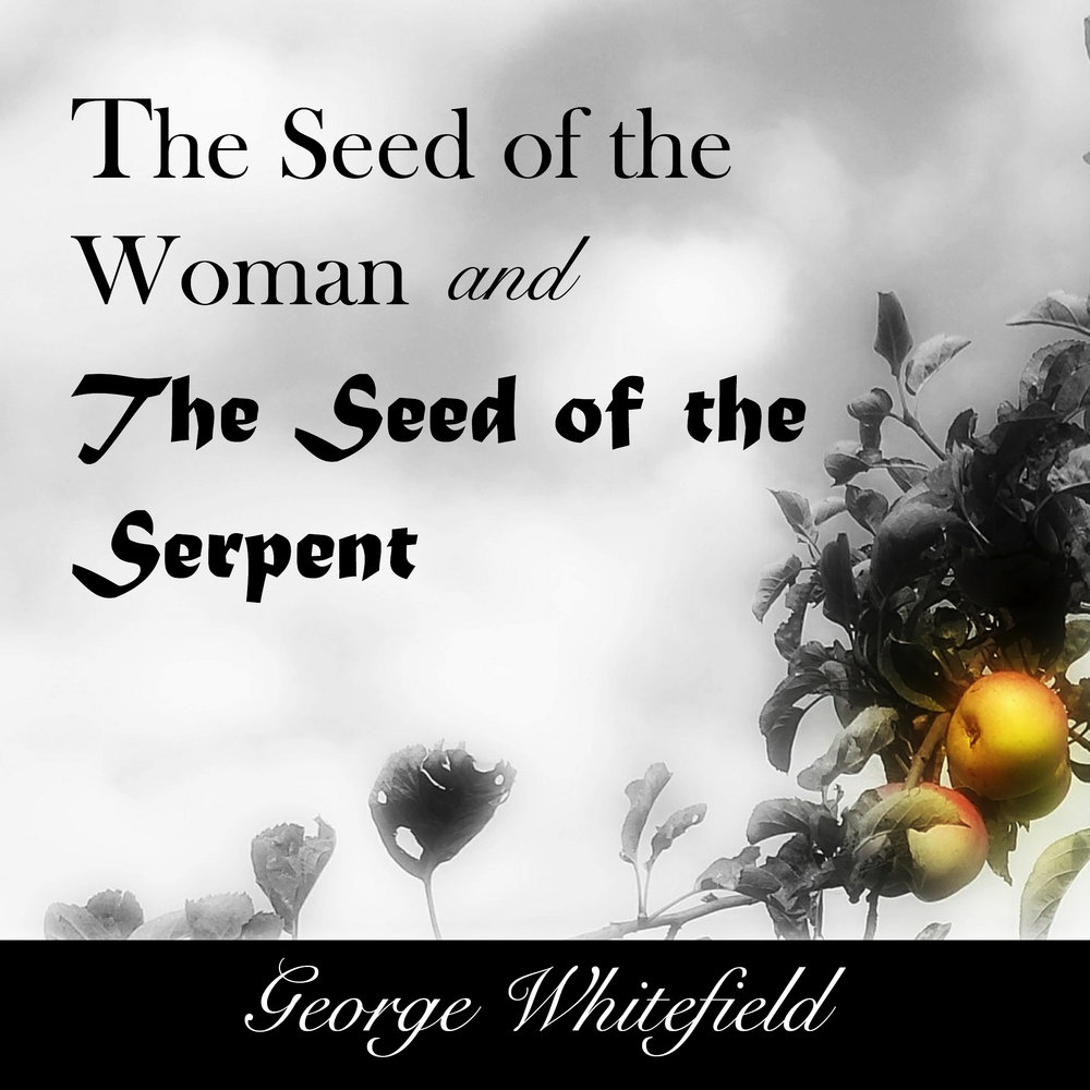 Audible Cover (The seed of the woman and the seed of the serpent) .jpg