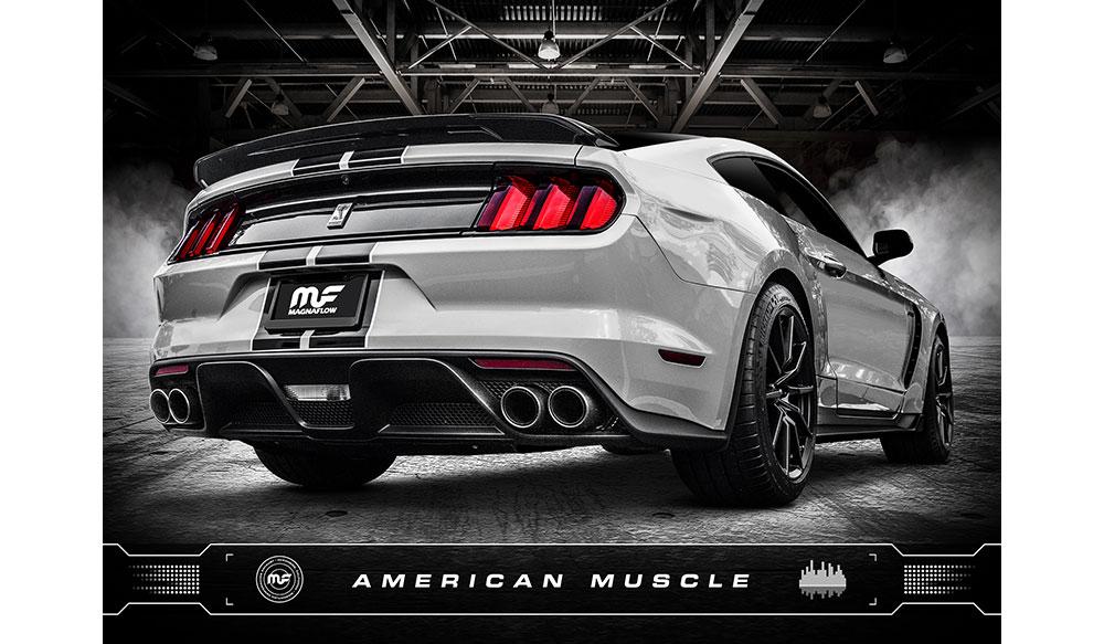 American_Muscle.jpg
