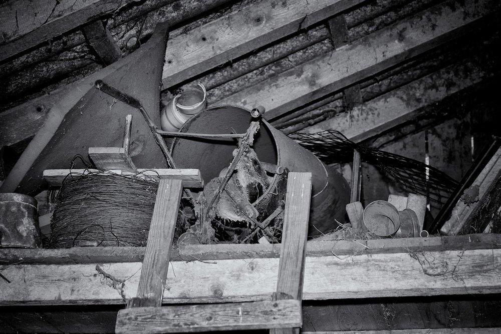 attic-667066_1920.jpg