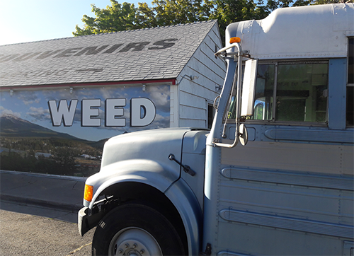 weed shop sign bus 500.png