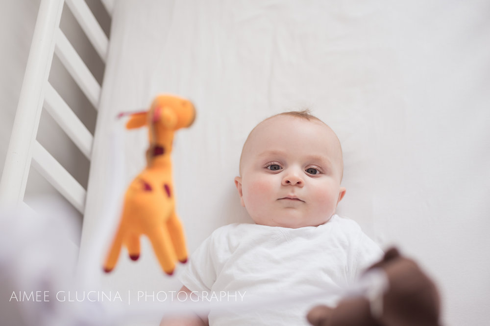 Infant Photography Aimee Glucina Photography (18 of 23).jpg