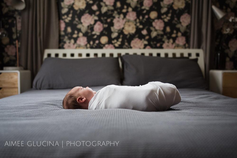 Smith Newborn (1 of 19).jpg