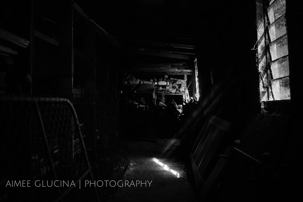Low Light garage shed (1 of 1).jpg