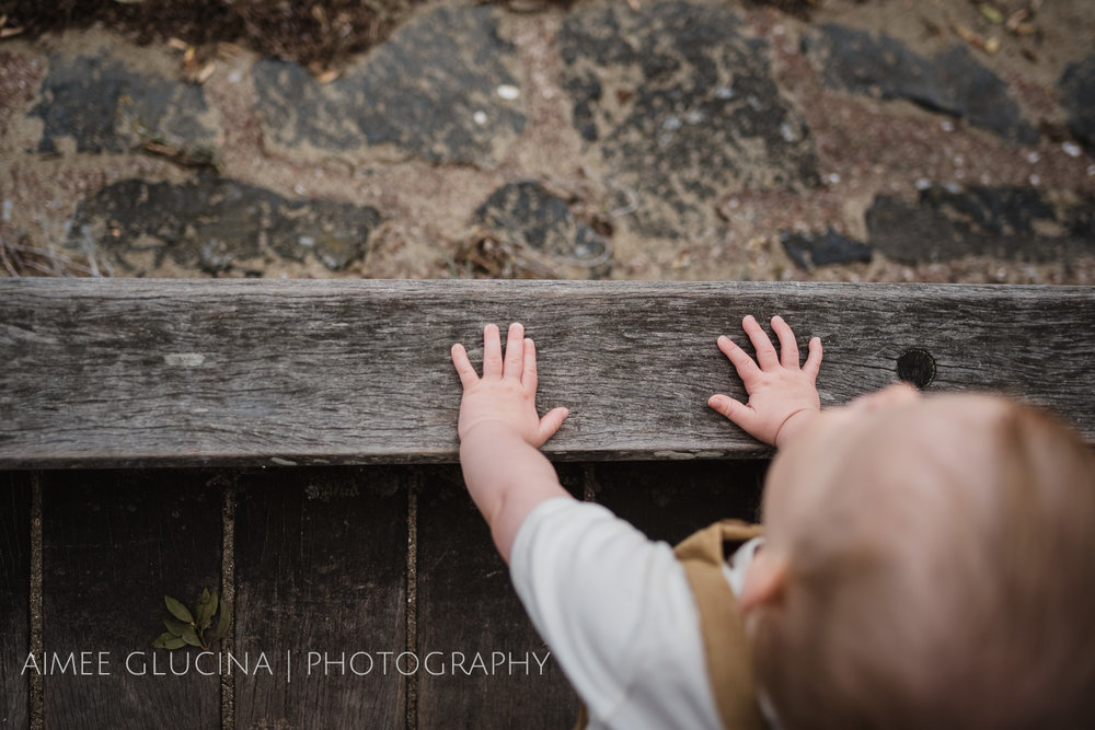 George Peat 1 Year Session by Aimee Glucina Photography-15.jpg