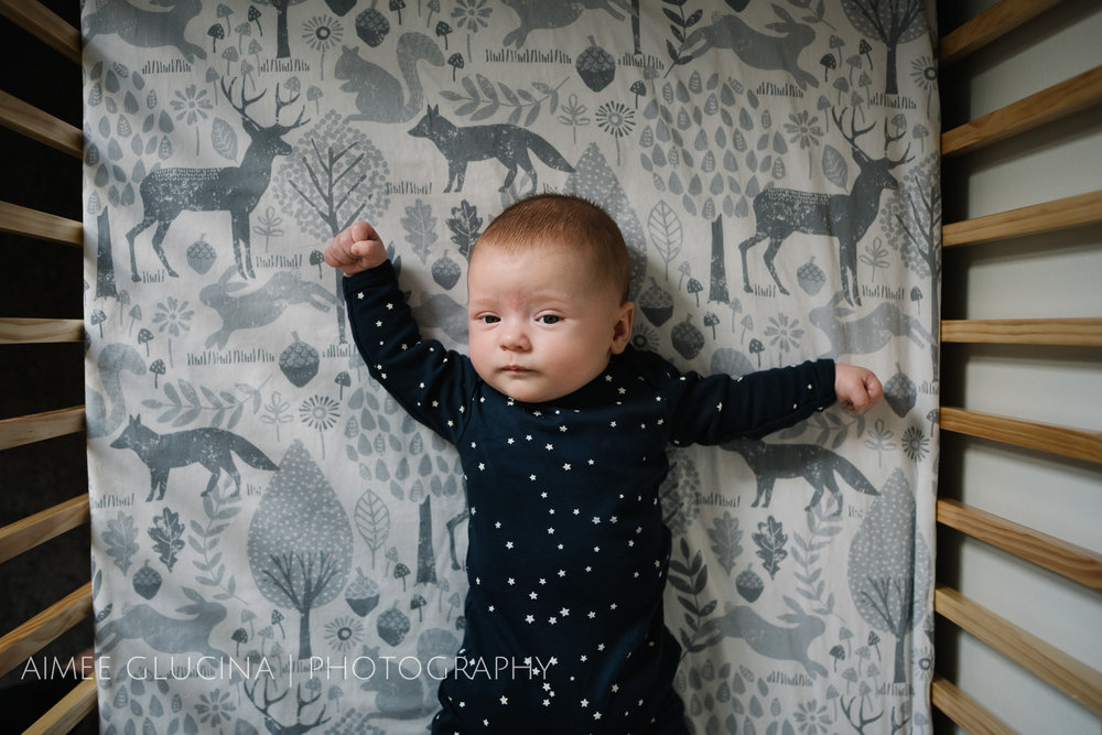 Watson Family Session by Aimee Glucina Photography-26.jpg