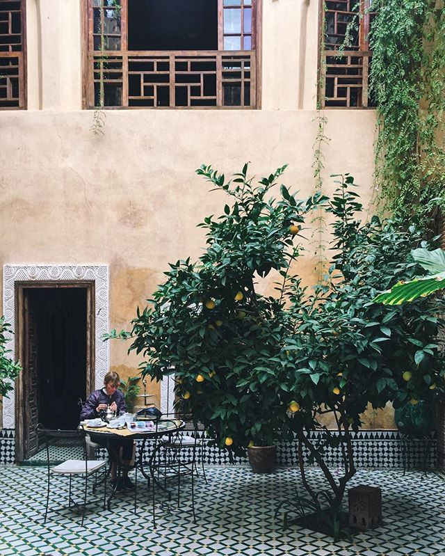 Back to lush green courtyards and lemon trees🍋
