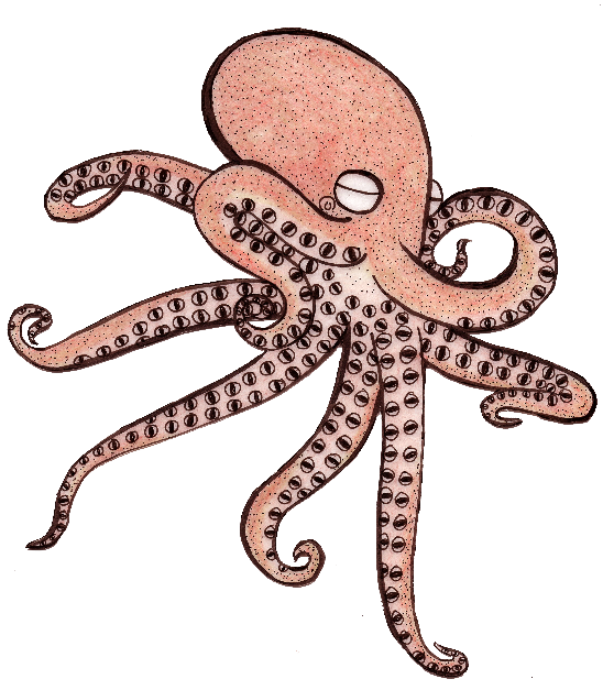 Eyeball Octopus