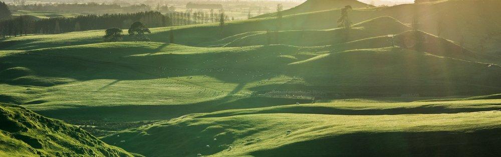 La fattoria della famiglia Alexander. ( ah se solo Peter Jackson avesse visitato prima la Toscana...) Credit : hobbitontours.com