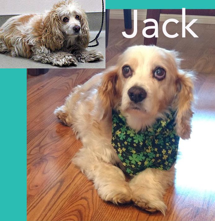 JackFFb&a.jpg