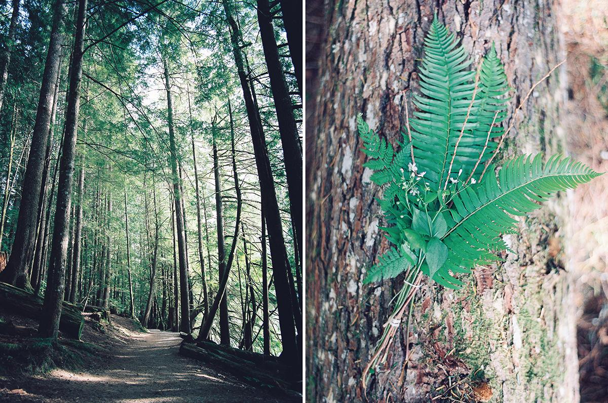 AmyKielPhotography_Vancouver_18