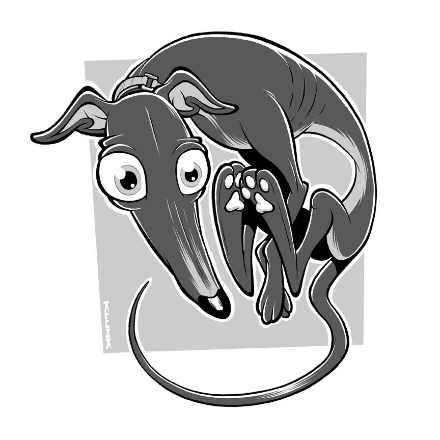 Pet Caricature Commission