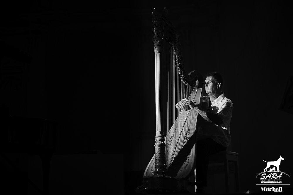 Harpist Andrew Ballantyne