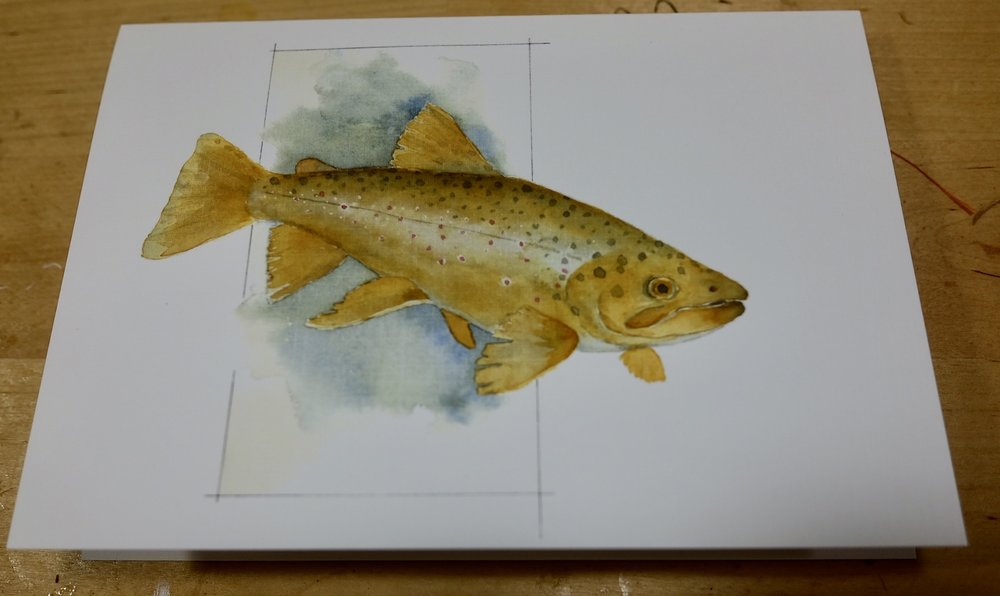 """Brown Trout"" by Julie Dockery"
