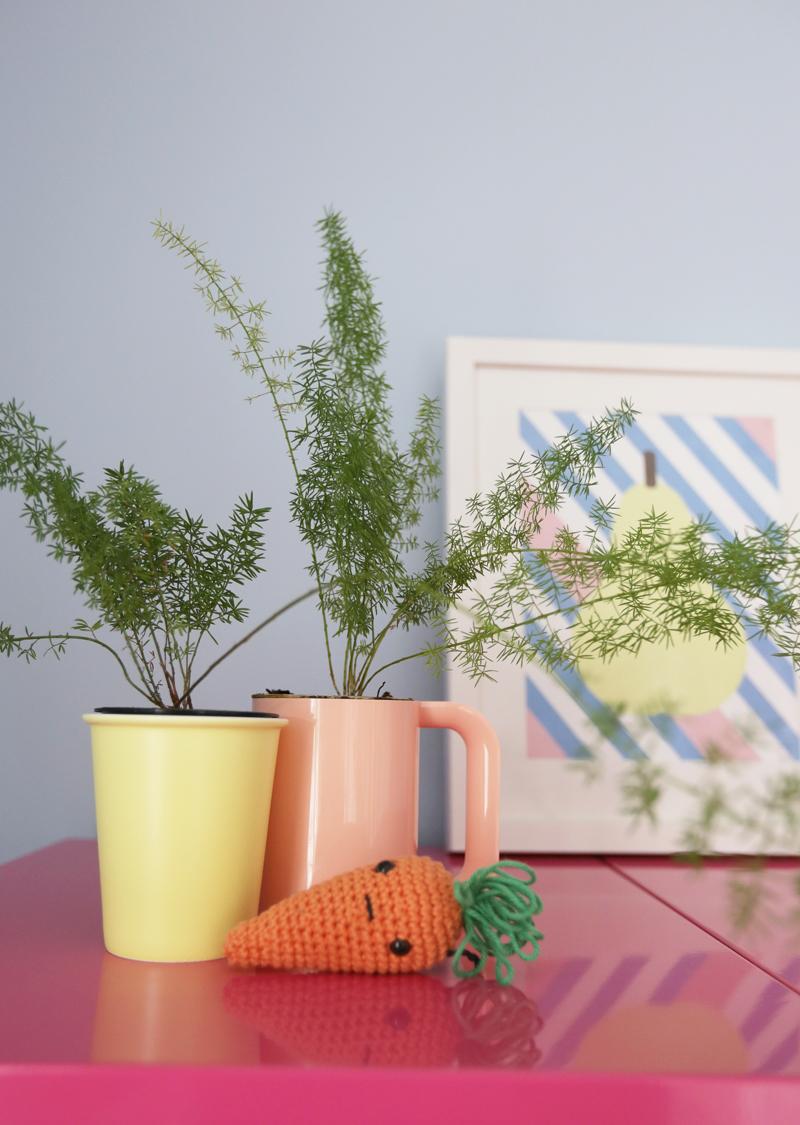 cl-olivia-plantsclose